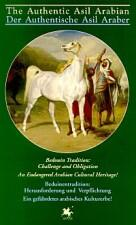 THE AUTHENTIC ASIL ARABIAN/der authenitische Asil Araber