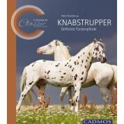 Knabstrupper – CADMOS Classic Collection Softcover farbig