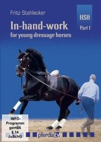In-hand-work for young dressage horse Part 1: Basics