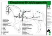Lehr-/ Pferdetafel (A4) - Einspänner-Brustblattgeschirr