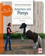 Die Reitschule - Arbeiten mit Ponys