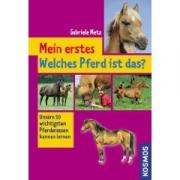 Mein erstes: Welches Pferd ist das?