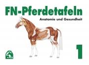 FN-Pferdetafeln Set 1 - Anatomie und Gesundheit