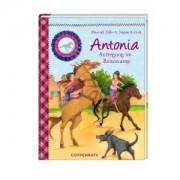 Reiterhof Rosenburg Band 6 - Antonia - Aufregung im Reitercamp