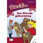 Bibi und Tina Band 17 - Der Pferdegeburtstag