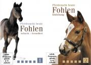 DVD-Set Pferdezucht heute 1 + 2: Fohlen - Erziehung, Aufzucht