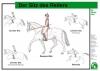 Lehr-/ Pferdetafel (Großformat) -  Der Sitz des Reiters