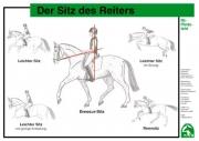 Lehr-/ Pferdetafel (A4) - Der Sitz des Reiters
