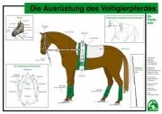 Lehr-/ Pferdetafel (A4) - Die Ausrüstung des Voltigierpferdes