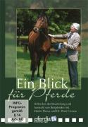 Ein Blick für Pferde (DVD)