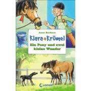 Klara + Krümel:Ein Pony und zwei kleine Wunder (CD)