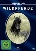 Faszinierende Tierwelten: Wildpferde