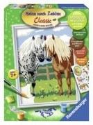 Malen nach Zahlen - Glückliche Pferde (18x24cm)