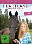 Heartland - Paradies für Pferde, Staffel 3.1 (3 DVDs)