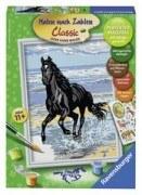 Malen nach Zahlen - Pferd am Strand (18x24cm)