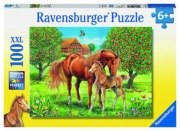 Pferdeglück auf Wiese 100 Teile Puzzle