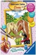 Malen nach Zahlen - Pony Peppermint (18x24cm)