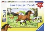 Welt der Pferde (2x 24 Teile Puzzle)